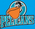 Pelicans-Trophy Tournament